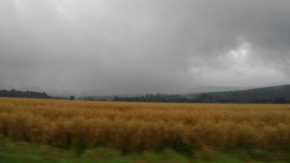 Nieselwetter bei Wunsiedel