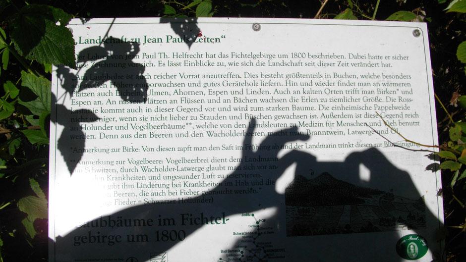 """7. Tafel """"Landschaft zu Jean Pauls Zeiten"""" - Laubbäume im Fichtelgebirge um 1800"""