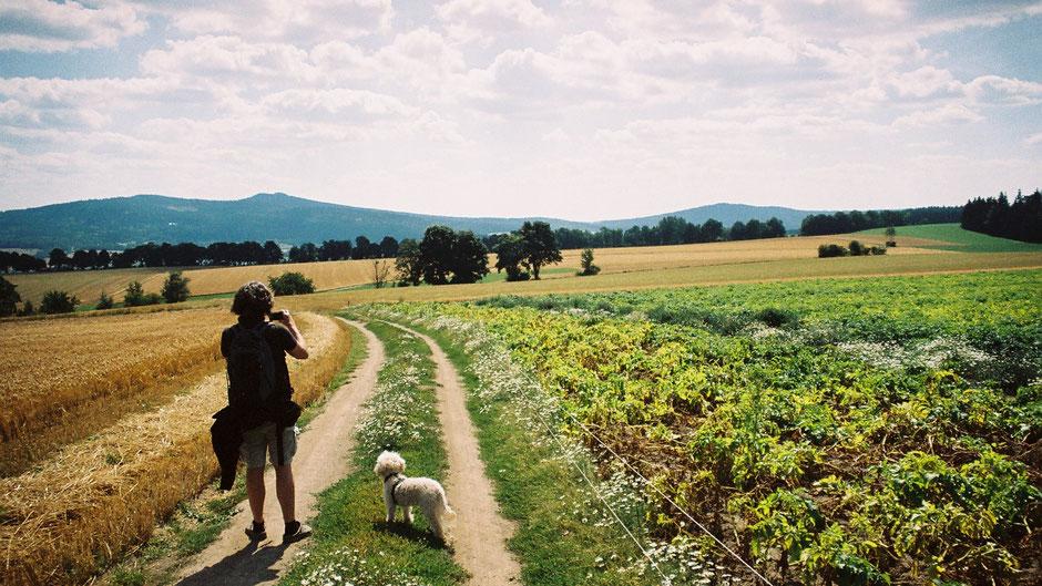 Auf dem Jean-Paul-Weg, die blauen Bergrücken des Fichtelgebirges, kurz vor Wunsiedel