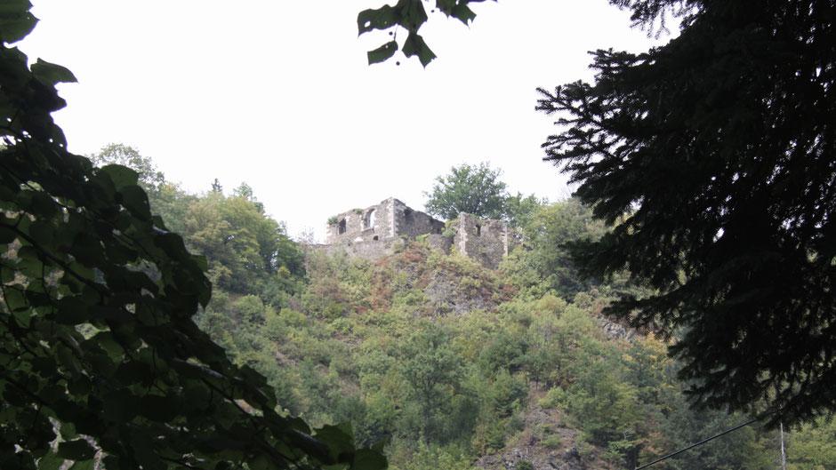 Blick auf die Burgruine von Bad Berneck