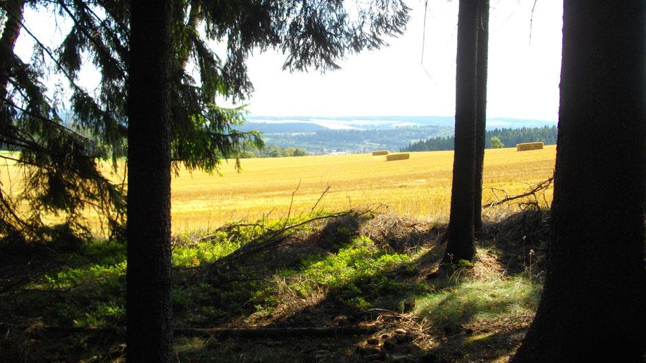 Auf dem Jean-Paul-Weg – kurz vor Wunsiedel