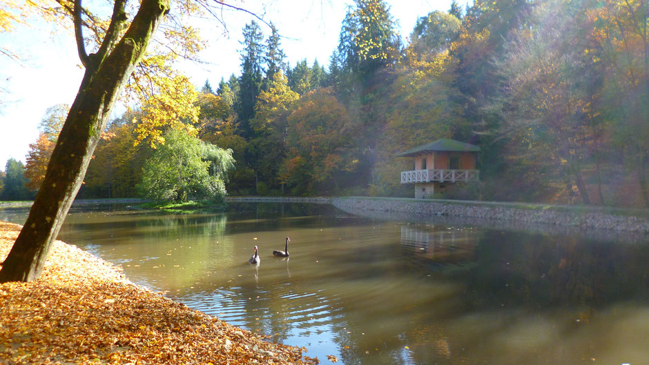 Herzog- oder Talmühlweiher mit Badehaus im Schlosspark Fantaisie, an ihm führt der Talweg entlang.