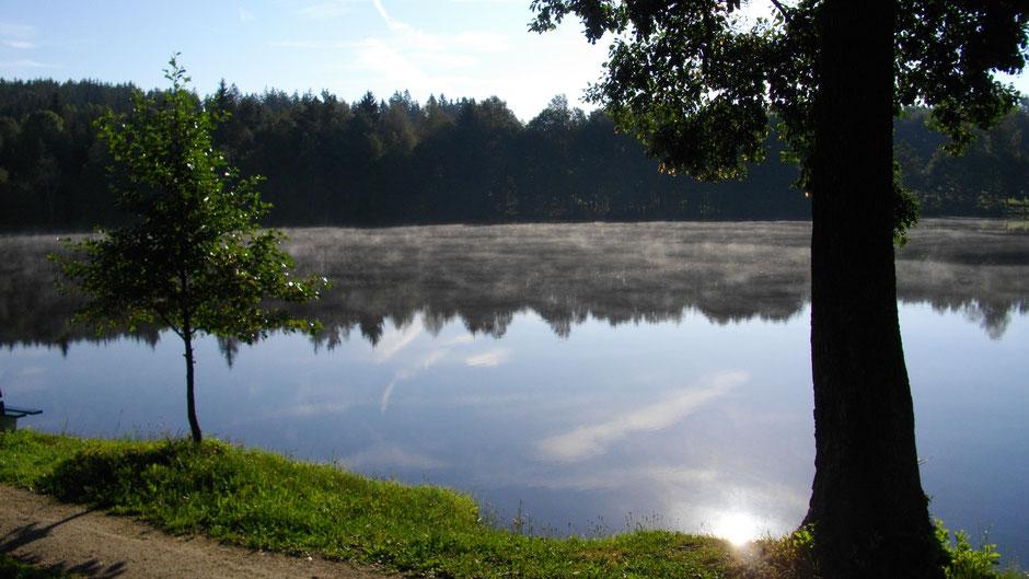 Morgenstimmung am Nagler See