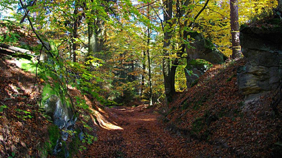 Arkadienweg: Oberwaiz – Teufelsloch – Waldhütte – Neustädtlein (superschön!)