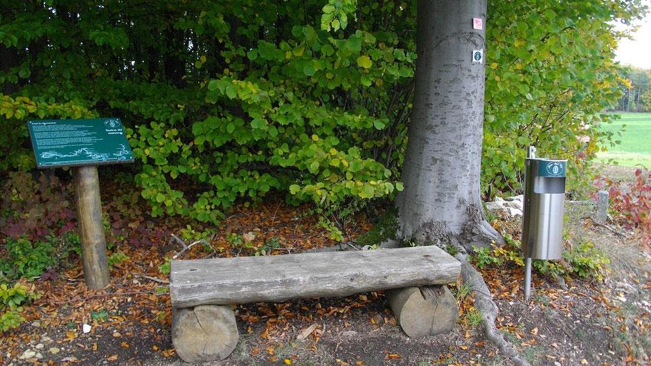 """Auf dem Jean-Paul-Weg, (die letzte) Stationstafel 161 """"Engel der Freundschaft"""" kur vor Kleinhül"""