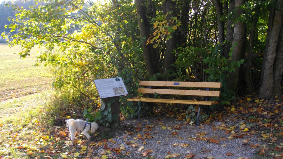 Auf dem Jean-Paul-Weg am Parkplatz Sanspareil – Landschaftstafel 28 »Sanspareil um 1800«
