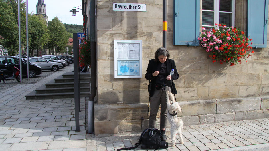 """An der Bushaltestelle in Goldkronach spricht Fidel wieder zu mir und meint: """"Darf ich immer dabei sein? Eigentlich richtig immer."""""""