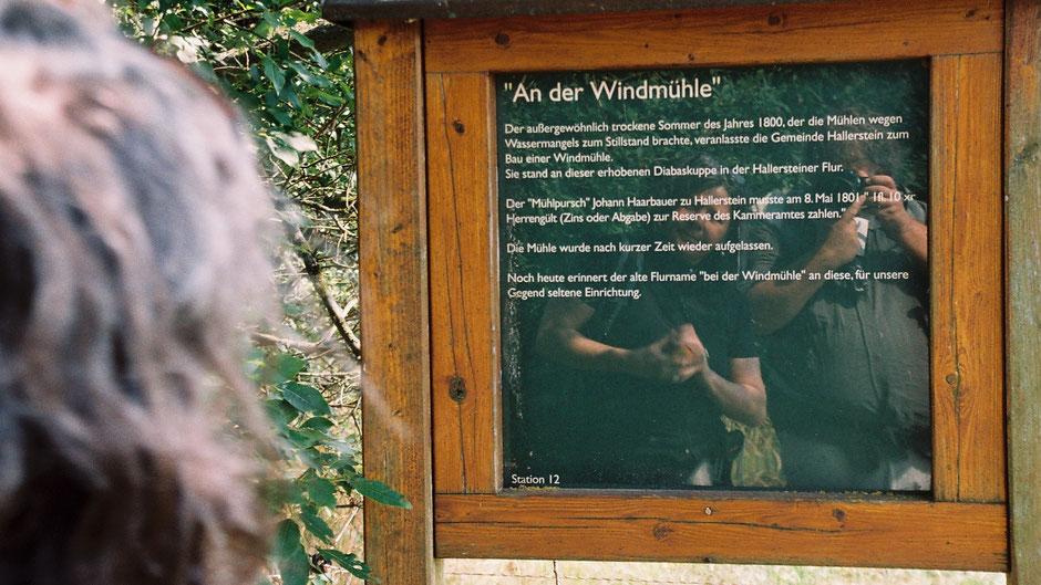 """Hallersteiner Rundweg, Stationstafel 12 """"An der Windmühle"""""""