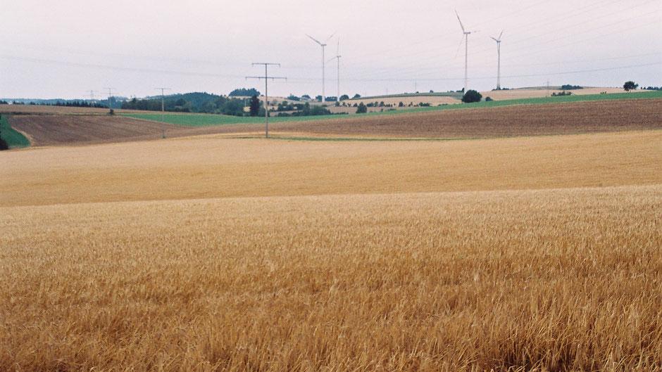 Auf dem Jean-Paul-Weg – Windräder hinter Fattigau