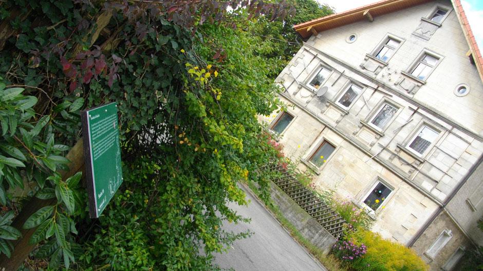Auf dem Jean-Paul-Weg  in Kottersreuth – Stationstafel 98 »Dorfschule als Realschule« vor einem alten Sandsteinhaus
