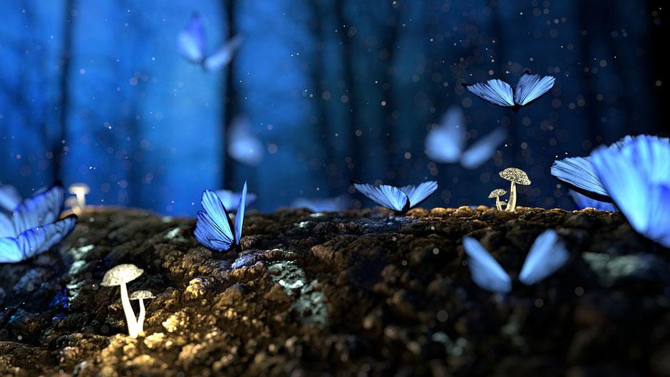 Traumdeutung Tiere, Traumdeutung Farben, Träume deuten, Traumsymbole deuten