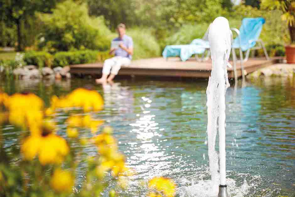 Lösungen für Teich, Bachläufe, Pumpen und Filter