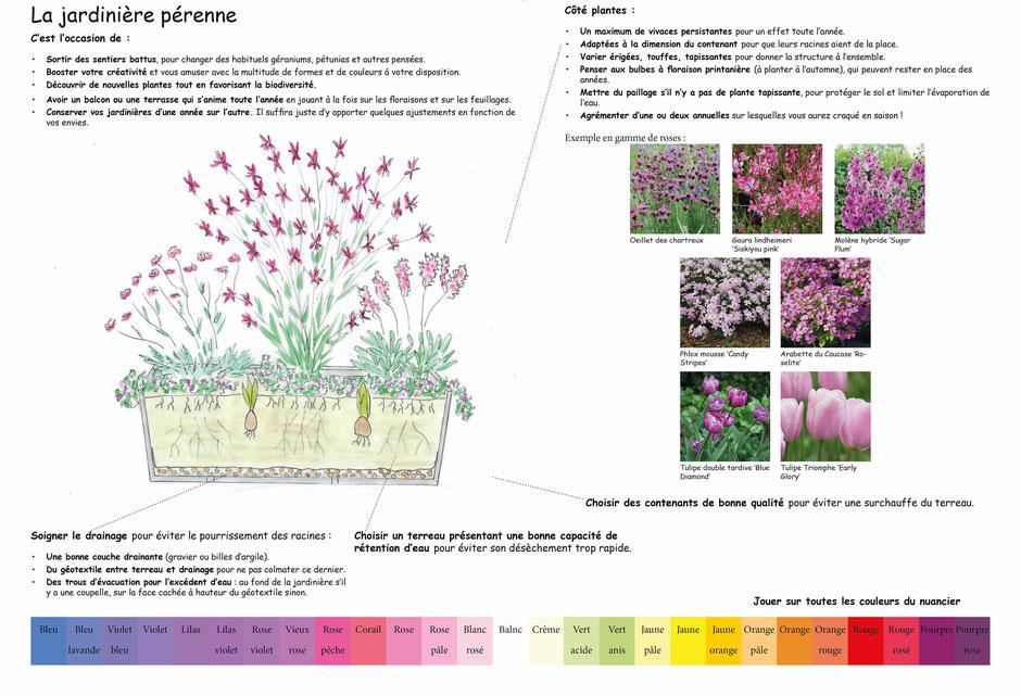 Les principes de création d'une jardinière pérenne