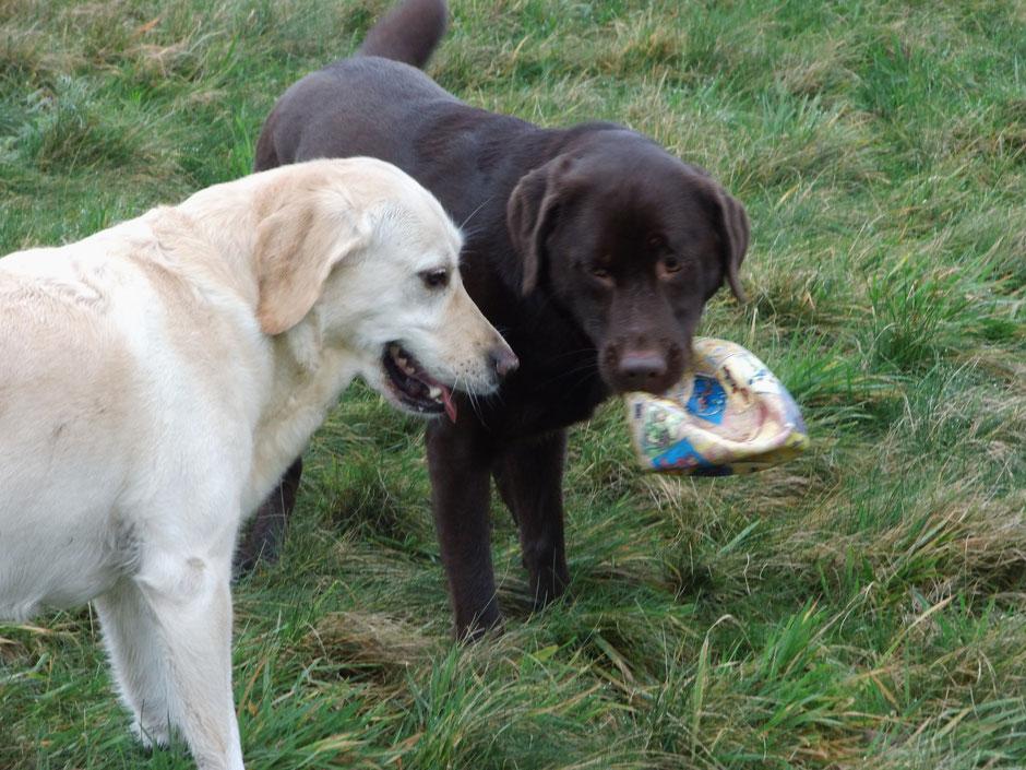 Krümel und Toni mit gefundener Beute