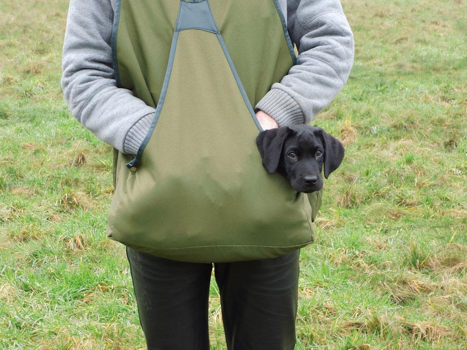 Auf dem Weg zum Treffen: Finch das Felldummy