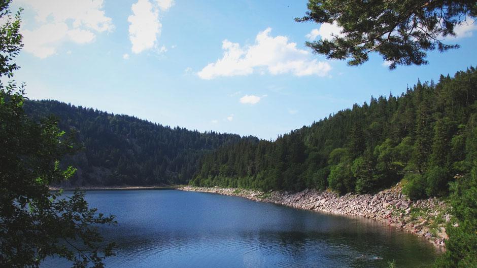 bigousteppes alsace lac blanc foret