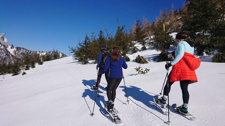 St. Wolfgang, Hike & Nature, Salzkammergut, Schnee, Schneeschuhe, Schneeschuhwanderung, Geführte Wanderung, Sonne, Wandern
