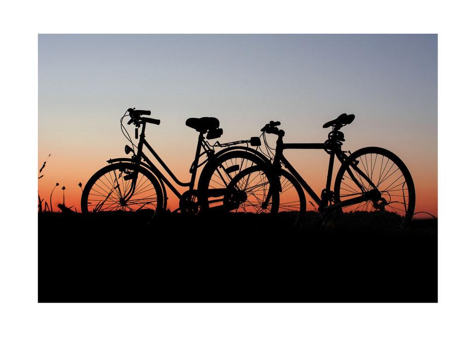 Zwei Fahrräder im Abendrot auf einer Wiese.