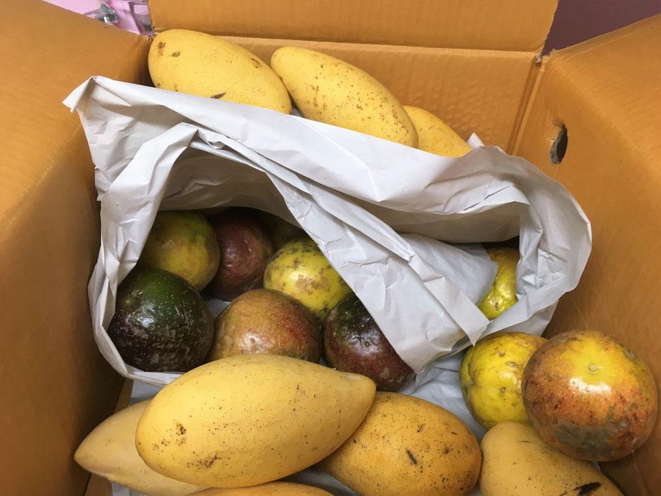 So sehen reife Mangos und Maracujas aus, den Geruch beim öffnen des Paketes kann man einfach nicht beschreiben. Es fällt mir jedesmal schwer sie nicht gleich auf zu essen. hihi