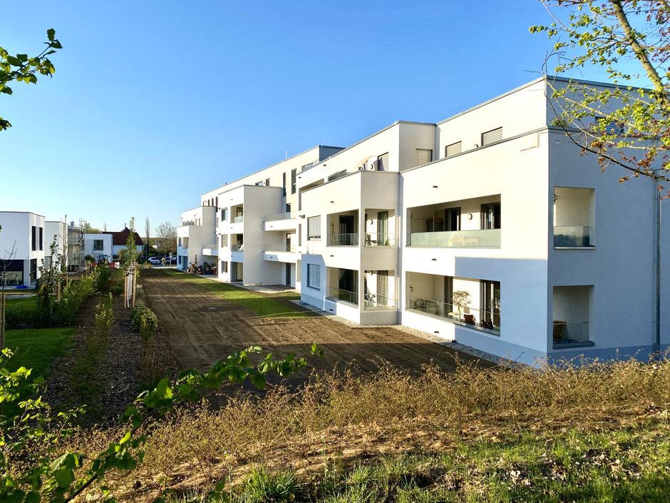 Immobilien kaufen Markkleeberg Neubau Wohnung Markkleeberg