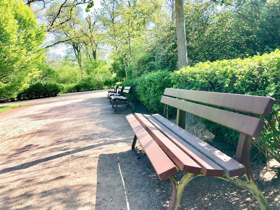 Leipzig Park Clara Zetkin Rosental Friedenspark Grünanlagen