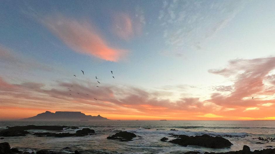 Cape Argus 2019 mit Equatours