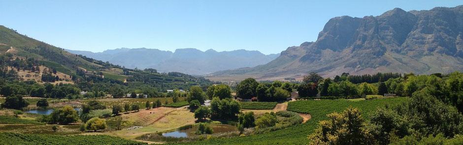 Stellenbosch Radrennen