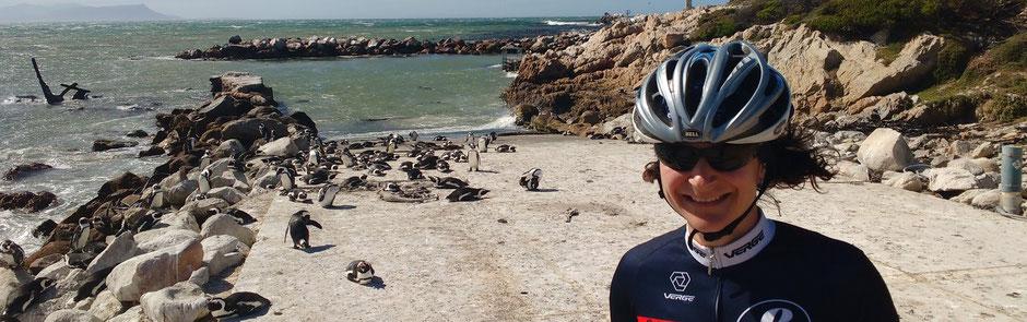 Radtraining für das Jedermannrennen in Kapstadt