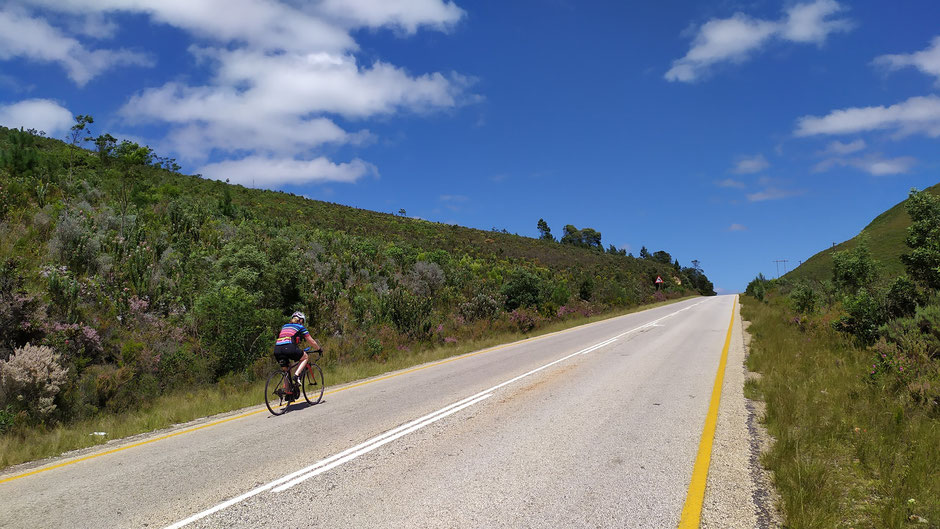 Garden Route Road Cycling Tour with Equatours