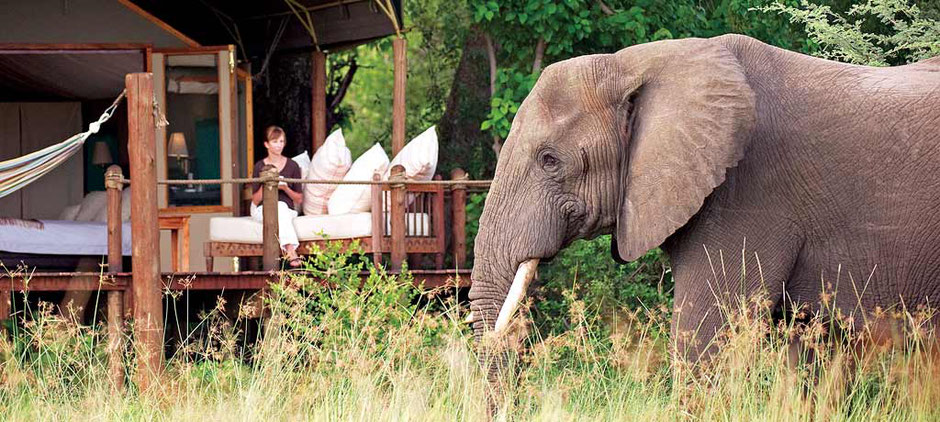 Abercrombie & Kent Elephant Camp in Botswana, Africa