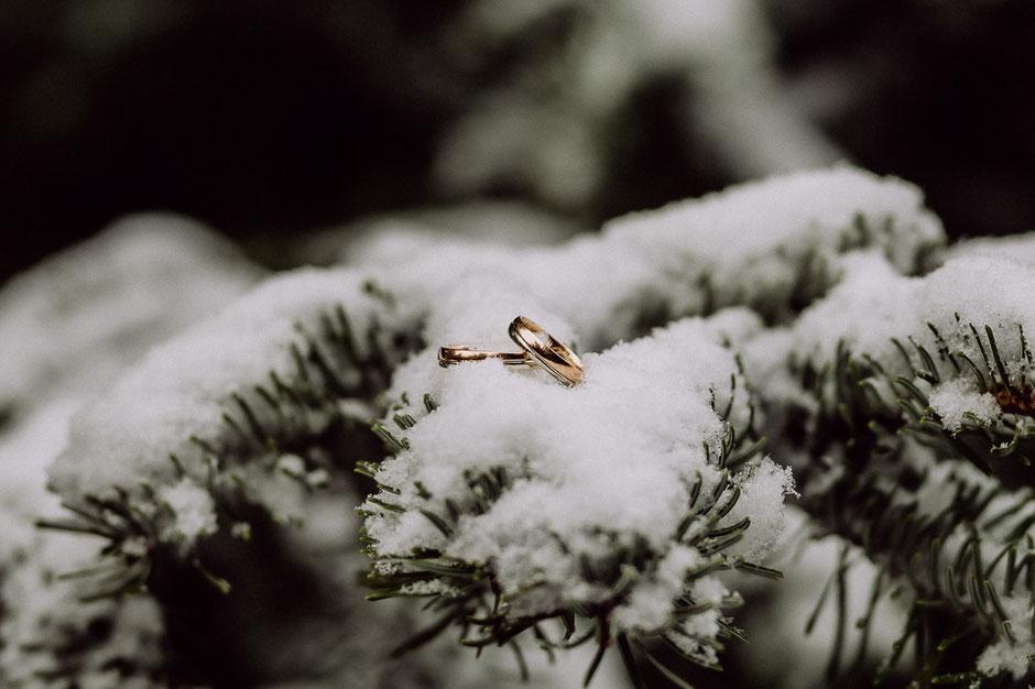 Eheringe aus Gold und Silber liegen auf schneebedecktem Tannenzweig