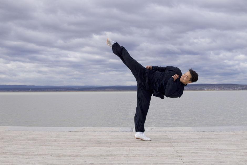 Kung Fu Studio Zhang Wien