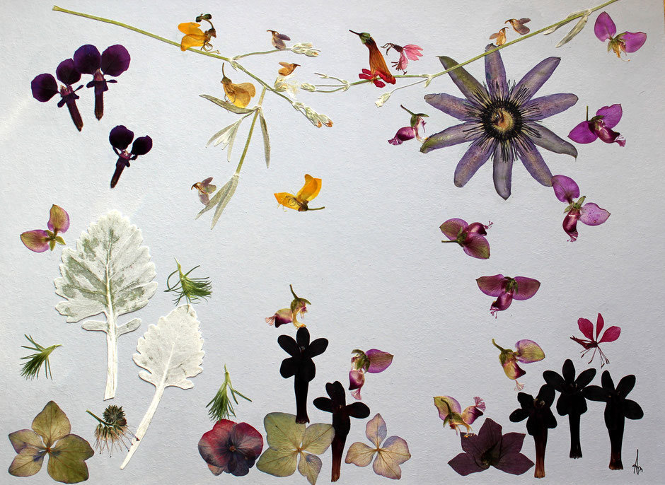 Kunstwerk aus echten Blüten - gearbeitet als Tür für einen kleinen Badschrank