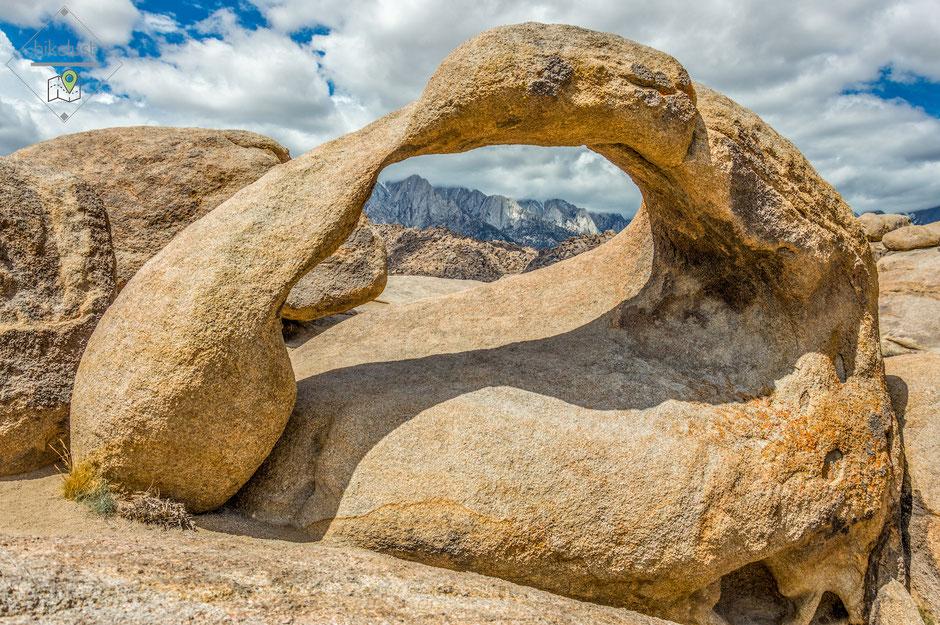 Möbius Arch