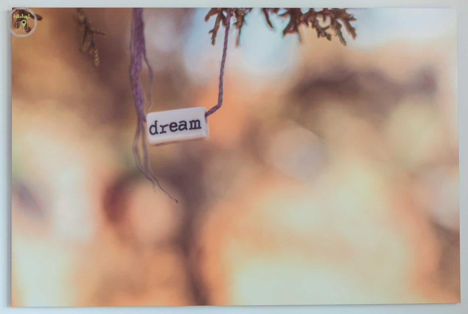 Wandbild Produkttest Sedona Dream Fotofabrik
