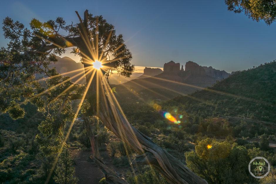 Sedona Arizona Cathedral Rock Red Rock Loop