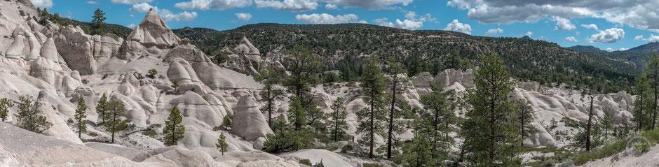 pine park utah naveda hikelust abenteuer abseits natur wandern fotografie