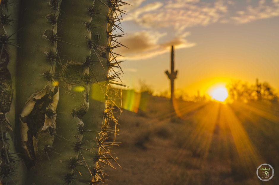 Papago Park Arizona Phoenix