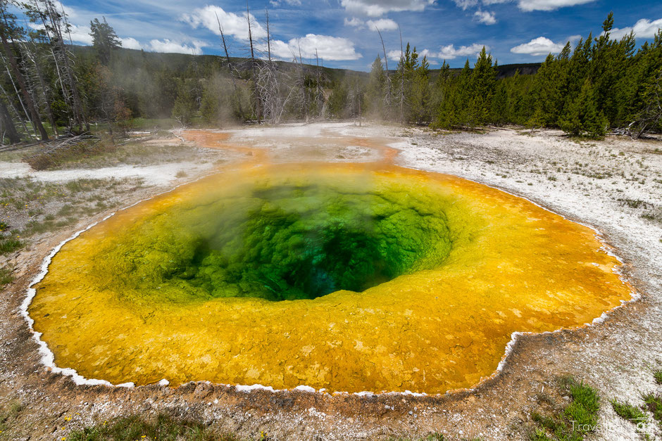 Yellowstone National Park Morning Glory