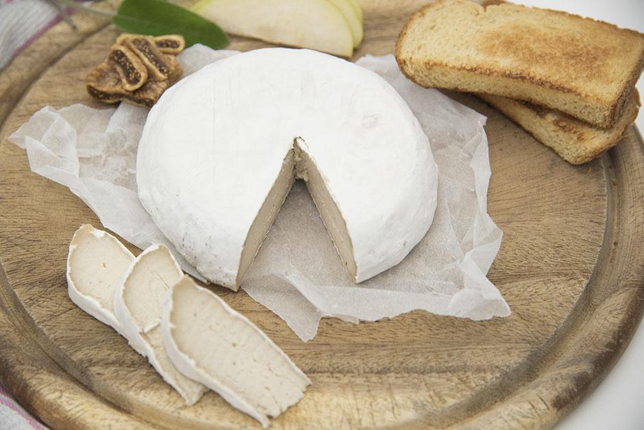 Camembert vegan mit Kulturen