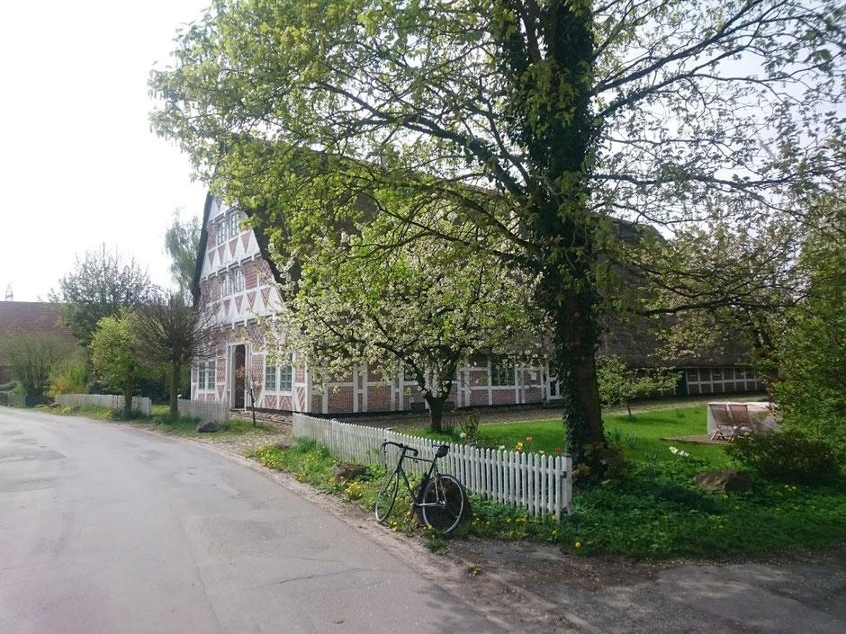 Zwischen Stade und Buxtehude.