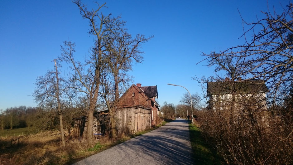 Rennrad, Hamburg, Norwid,