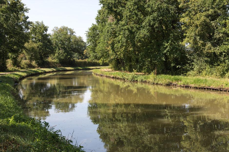 Natur pur: immer am Canal du Nivernais entlang