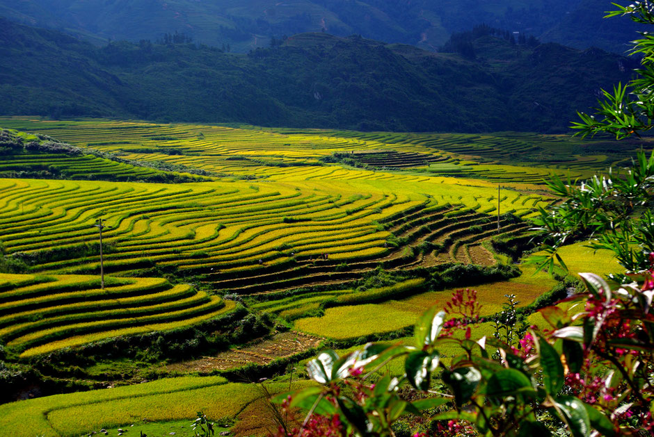The Mountains of North Vietnam