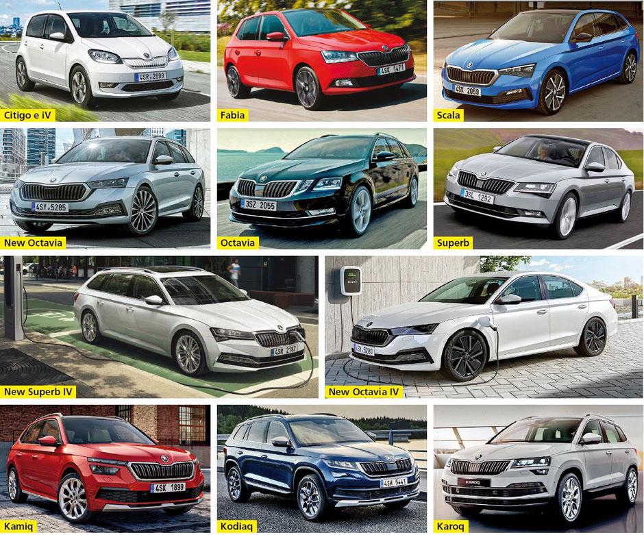 Seegarage Stäfa AG, Stäfa - Citigo e iV •  Fabia •  Scala •  New Octavia •  Octavia •  Superb •  New Superb IV •  New Octavia IV •  Kamiq •  Kodiaq •  Karoq