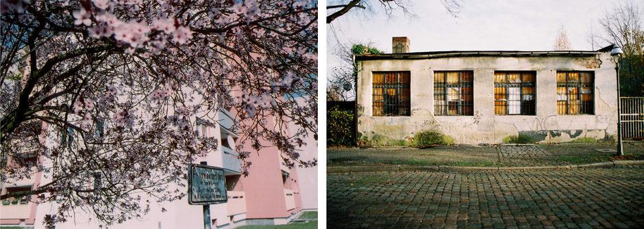 berlin rudow wohnhaus 60er Jahre mit Frühlingsblüten in rosa im März 2007 - freistehende funktionsbarrake kiehlufer im verfall im Juni 2006 - Architekturfotografie Berlin - oqopo bildunst