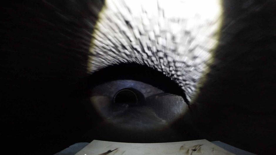 Screenshot des GoPro - Videos