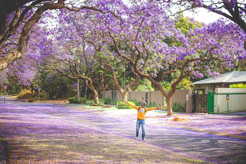 Pretoria | South Africa