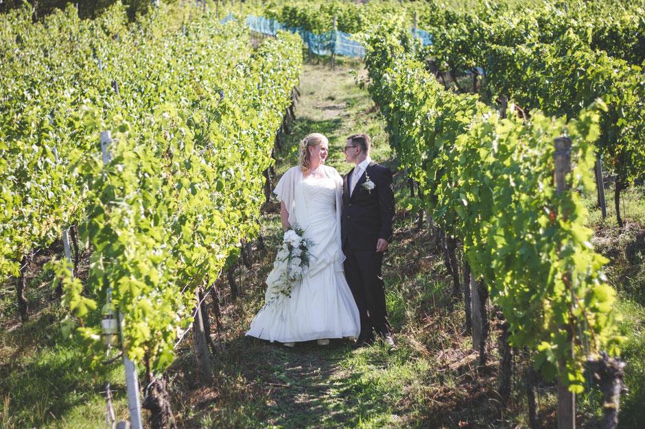 Brautpaar, Weinberge, Franken