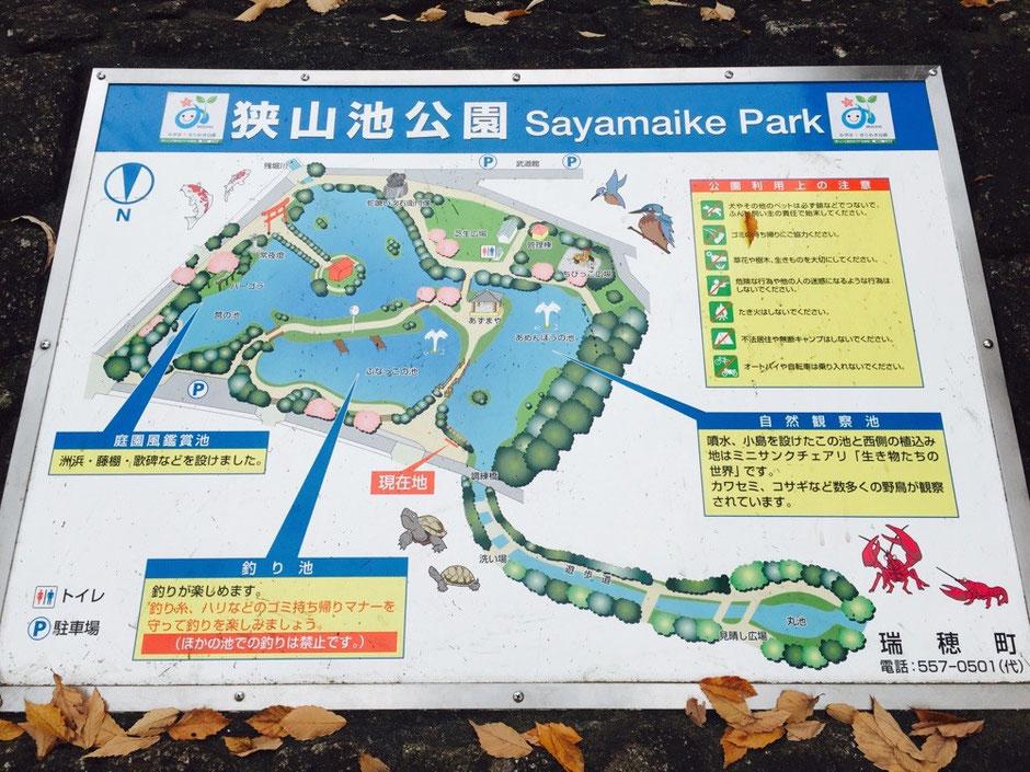 Map of Sayamaike Park (Sayama pond park) Tokyo Mizuho nature headwater Zanbori river walking tourist spot TAMA Tourism Promotion - Visit Tama 狭山池公園 案内図 東京都瑞穂町 自然 散策 残堀川水源地 観光スポット 多摩観光振興会